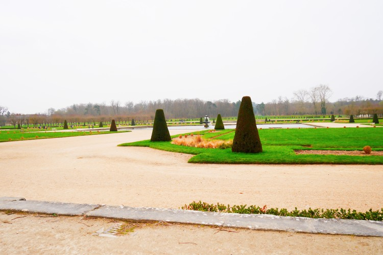 Fontainebleau 8